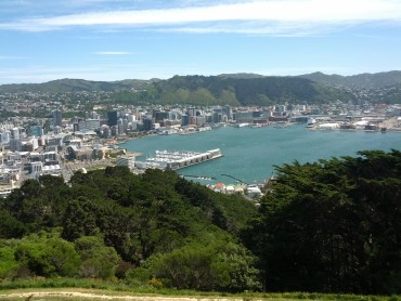 Walks around Wellington
