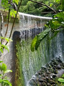 Arty shot of Birchville Dam