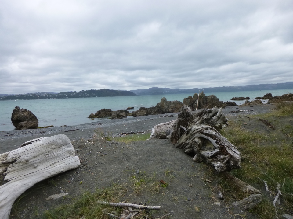 Wellington and around: Korokoro, Birchville Dam, Cannon Point and Pencarrow