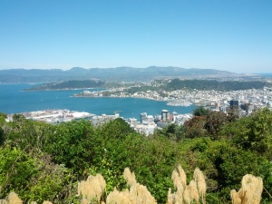 Wellington from Te Ahumairangi Hill Lookout