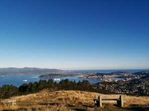 Wellington city from Mt Kau Kau
