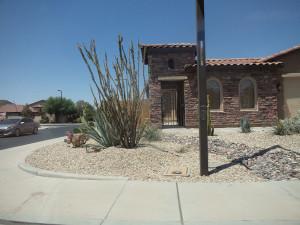 Capsule suburb, Phoenix AZ