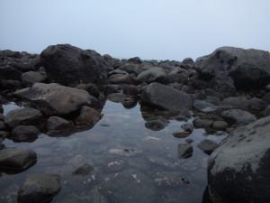 Rock pools, Cape Egmont