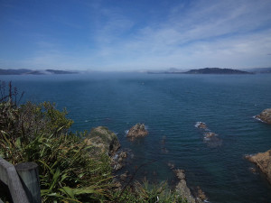 A strange fog entering the harbour from Cook Strait and flowing over the island