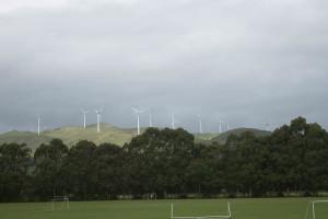 Te Apiti windfarm