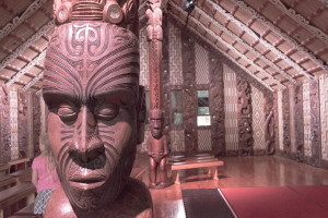 Inside the meeting house. Panels represent all the different Iwi of the country.