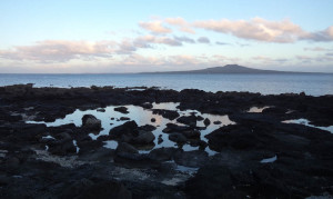 Rangitoto Island (volcano), off-shore from the rockpools outside Takpuna beach holiday park