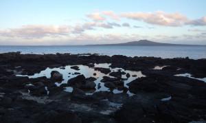 Rangitoto Island (volcano), off-shore from the rockpools outside Takpuna beach holiday park