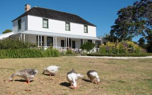 Kemp House w/Geese. 1819