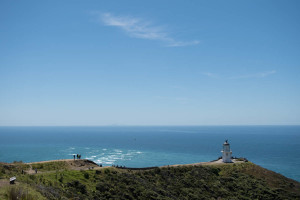 Cape Reinga. You can just make out the Three King Islands on the horizon, where the spirits pop up for one final look before heading to Hawaiki.