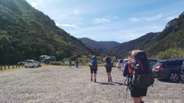 Tramping: Aorangi Forest Park, Pinnacles to Mangatoetoe