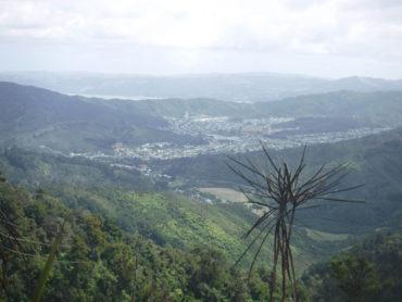 Tramping: Whakanui track to Matthews Stream overnight