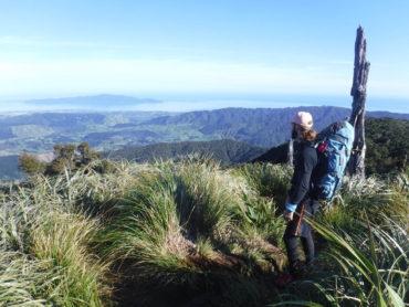 Tramping: Kapakapanui Hut circuit track