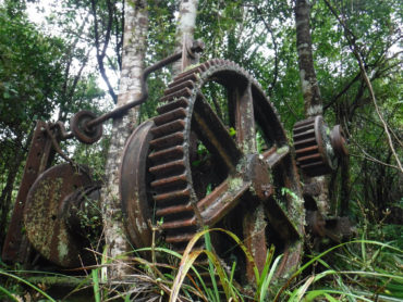 Tramping: Waiotauru Hut, Kapakapanui, Pukeatua Otaki Forks Overnight Loop