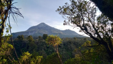 Tramping: Around the Mountain Circuit, Mt Taranaki